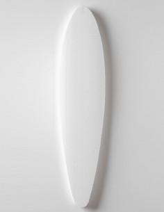 Pre-shaped Longboard Mold