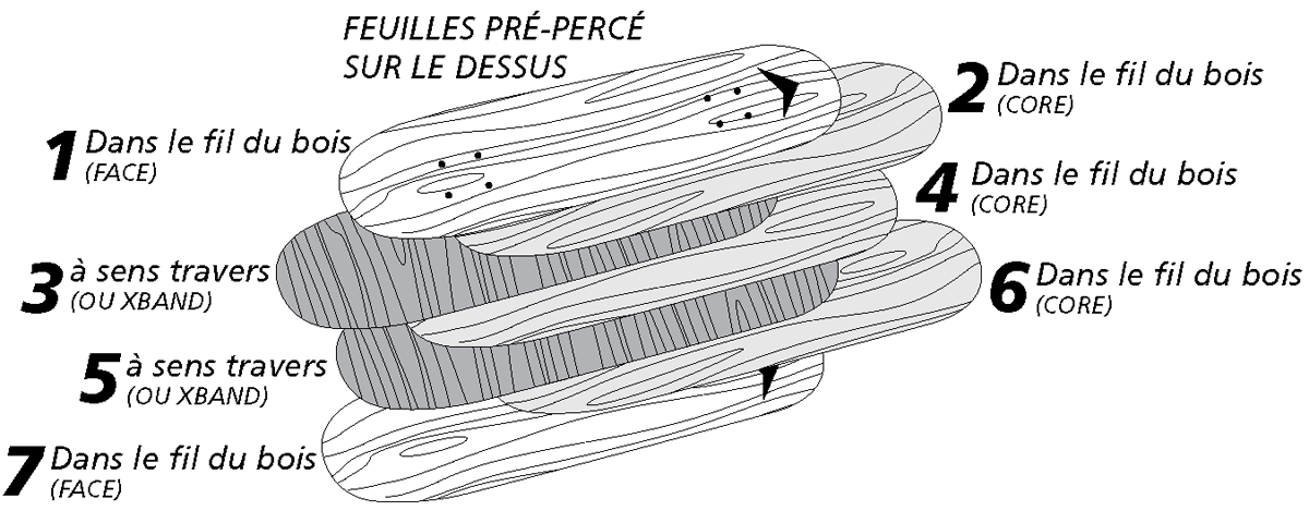 Les différentes plis de placage pour un Skateboard